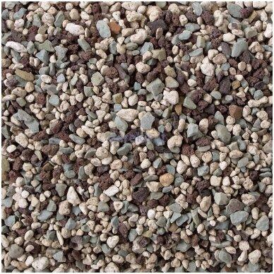 Akmenukai su trąšomis - LECHUZA PON 12l, 19791 2