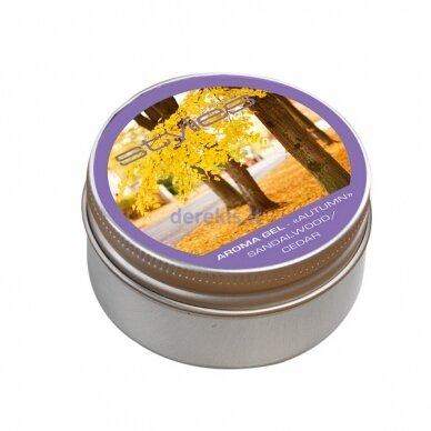 Aromatinis žele kvapų garintuvui ELARA Stylies AUTUMN