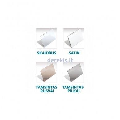 Dušo sienelė nišoms Baltijos Brasta GRETA Plius (dydį ir stiklo spalvą galima pasirinkti) 2