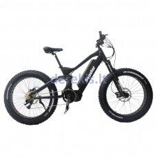 Elektrinis dviratis Beaster BS1050