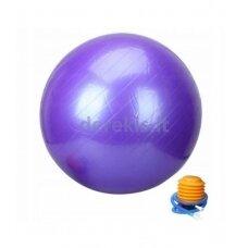 L20075 purple