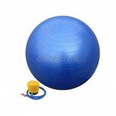 L20075 blue