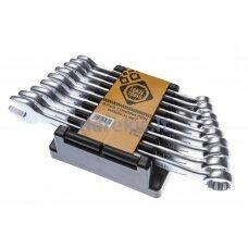 Kombinuotų raktų rinkinys Forte Tools 481401, 9 vnt.