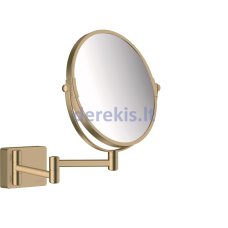 Skutimosi veidrodis Hansgrohe AddStoris, 41791140, šlifuotas bronzinis
