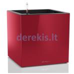 Vazonas su savaiminio drėkinimo sistema LECHUZA Canto cube 40 scarlet red, 13756