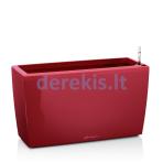 Vazonas su savaiminio drėkinimo sistema LECHUZA Cararo Premium 75 scarlet red, 18829