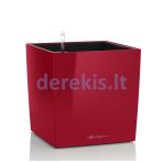 Vazonas su savaiminio drėkinimo sistema LECHUZA Cube Premium 50 scarlet red, 16567