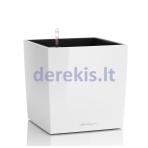 Vazonas su savaiminio drėkinimo sistema LECHUZA Cube Premium 50 White, 16560