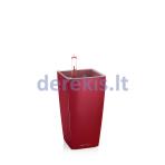 Vazonas su savaiminio drėkinimo sistema LECHUZA Mini Cubi Premium 9 scarlet red, 18121