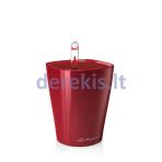 Vazonas su savaiminio drėkinimo sistema LECHUZA Mini Deltini Premium scarlet red, 14960