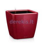 Vazonas su savaiminio drėkinimo sistema LECHUZA Quadro Premium 21 Scarlet Red, 16127