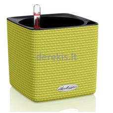 Vazonas su savaiminio drėkinimo sistema LECHUZA Cube Color 14 Lime Green, 13385