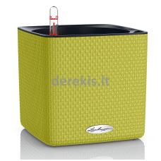 Vazonas su savaiminio drėkinimo sistema LECHUZA Cube Color 16 Lime Green, 13585