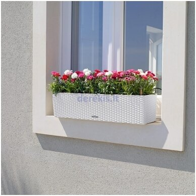 Vazonas su savaiminio drėkinimo sistema LECHUZA Balconera Cottage 80 White, 15610 4