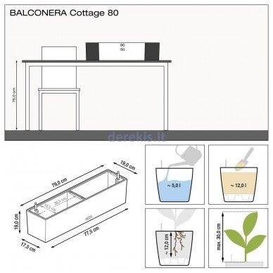 Vazonas su savaiminio drėkinimo sistema LECHUZA Balconera Cottage 80 White, 15610 10