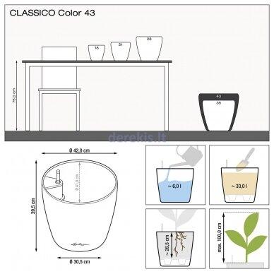 Vazonas su savaiminio drėkinimo sistema LECHUZA Classico Color 43 Slate, 13244 7