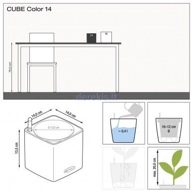 Vazonas su savaiminio drėkinimo sistema LECHUZA Cube Color 14 Lime Green, 13385 11