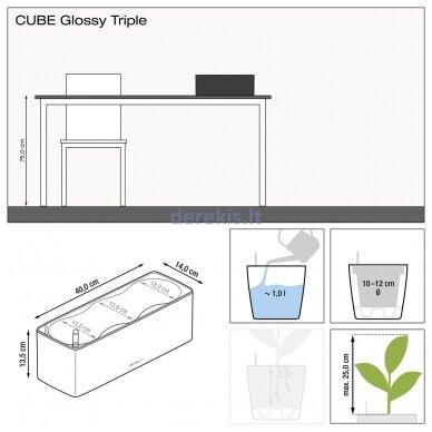 Trigubas vazonas su savaiminio drėkinimo sistema LECHUZA Cube Glossy Triple white, 13670 9