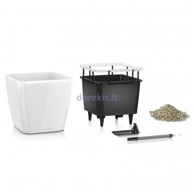 Vazonas su savaiminio drėkinimo sistema LECHUZA Quadro Premium 43 Espresso, 16181 2