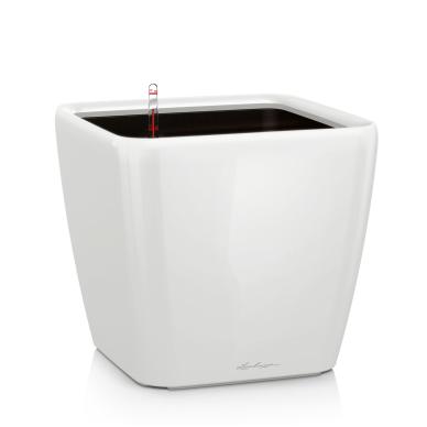 Vazonas su savaiminio drėkinimo sistema LECHUZA Quadro Premium 43 White, 16180